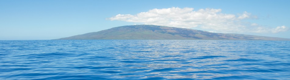 cropped-maui-water-fotolia_62938951_l-copy1.jpg